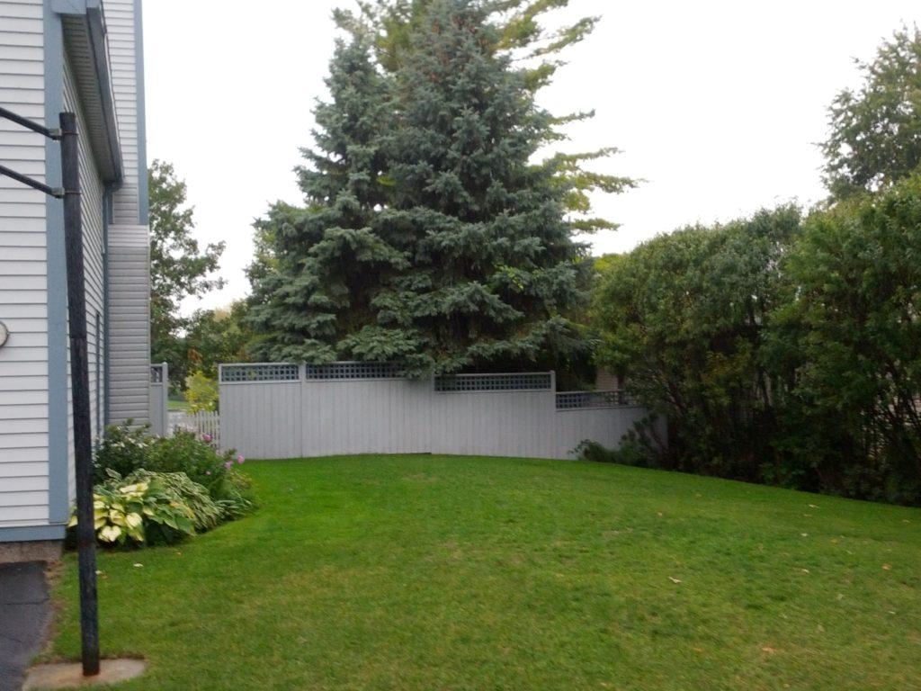 Backyard Fence Restored