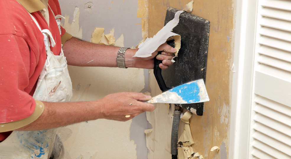 Importance of Professional Wall Paper Removal